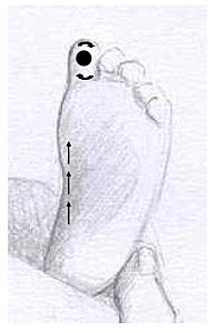 Reflexologie bébé