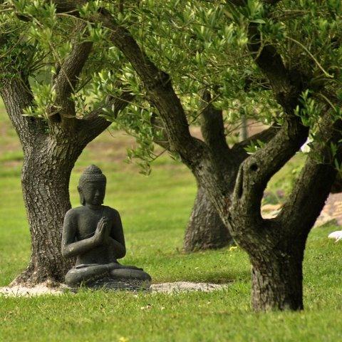 Durée de la méditation