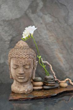 """Résultat de recherche d'images pour """"défi zen"""""""